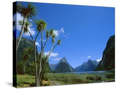 Mitre Peak, Milford Sound, Otago, South Island, New Zealand, Pacific-Neale Clarke-Stretched Canvas Print