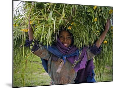 Portait of Local Girl Carrying a Large Bundle of Wheat and Yellow Meskel Flowers, Ethiopia-Gavin Hellier-Mounted Photographic Print