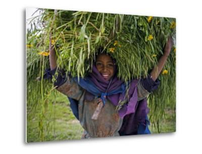 Portait of Local Girl Carrying a Large Bundle of Wheat and Yellow Meskel Flowers, Ethiopia-Gavin Hellier-Metal Print