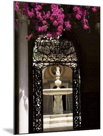 View Through Wrought Iron Gateway to the Patio Principal, Andalucia (Andalusia), Spain-Ruth Tomlinson-Mounted Photographic Print