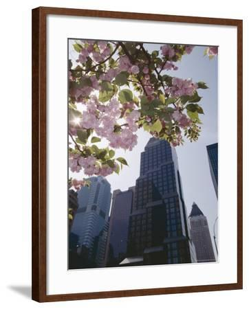 50th Street Looking West to 7th Avenue, New York City, New York-Adam Woolfitt-Framed Photographic Print