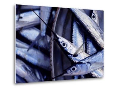 Fish Market, Stone Town, Island of Zanzibar, Tanzania, East Africa, Africa-Yadid Levy-Metal Print