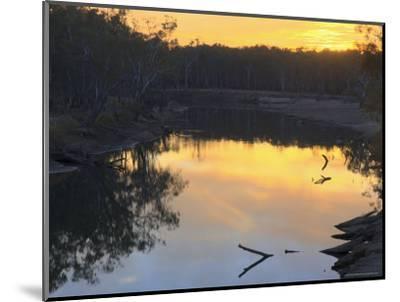 Murray River, Wahgunyah, Victoria, Australia, Pacific-Jochen Schlenker-Mounted Photographic Print