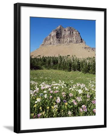 Logan Pass, Glacier National Park, Montana, United States of America, North America-James Hager-Framed Photographic Print
