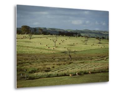 Farmland Near Willunga, Fleurieu Peninsula, South of Adelaide, South Australia, Australia, Pacific-Robert Francis-Metal Print