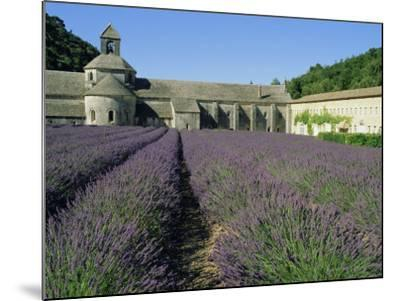 Rows of Lavender at the Abbaye De Senanque, Vaucluse, Provence, France, Europe-Bruno Morandi-Mounted Photographic Print
