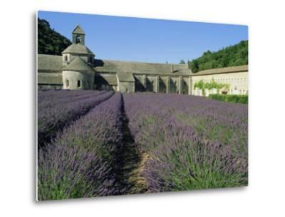 Rows of Lavender at the Abbaye De Senanque, Vaucluse, Provence, France, Europe-Bruno Morandi-Metal Print