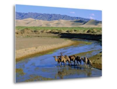 Camel Caravan, Khongoryn Els Dune, Gobi Desert National Park, Omnogov, Mongolia-Bruno Morandi-Metal Print