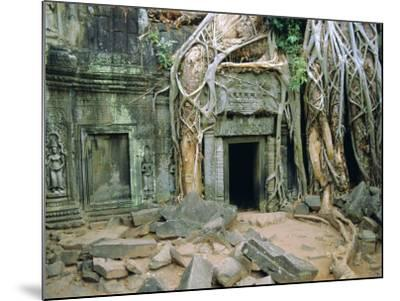 Tree Roots Overgrowng Temple, Ta Prohm, Angkor, Cambodia, Asia-Bruno Morandi-Mounted Photographic Print