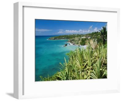 Guadeloupe, French Antilles, West Indies, Caribbean-J P De Manne-Framed Premium Photographic Print