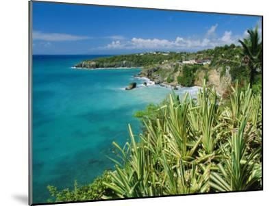 Guadeloupe, French Antilles, West Indies, Caribbean-J P De Manne-Mounted Premium Photographic Print