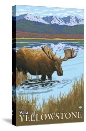 Moose Drinking at Lake, West Yellowstone, Montana-Lantern Press-Stretched Canvas Print