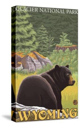 Black Bear in Forest, Yellowstone National Park-Lantern Press-Stretched Canvas Print