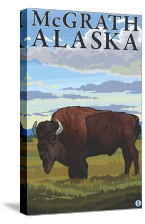 Bison Scene, McGrath, Alaska-Lantern Press-Stretched Canvas Print
