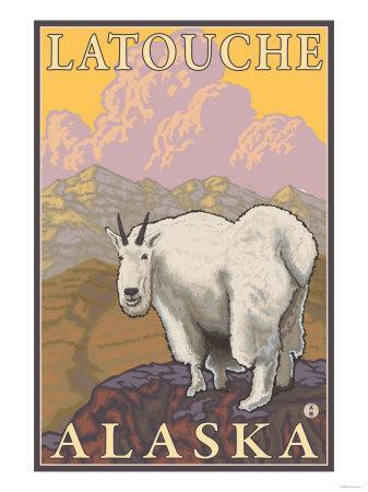 Mountain Goat, Latouche, Alaska-Lantern Press-Framed Art Print