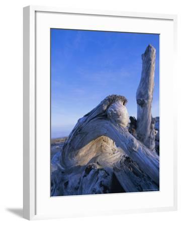 Queen Charlotte Islands, British Columbia (B.C.), Canada, North America-Oliviero Olivieri-Framed Photographic Print