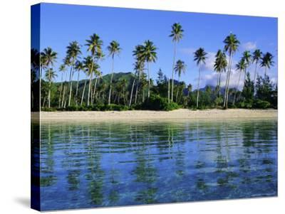 East Coast, Motu Nao Nao, Raiatea Island, Society Islands Archipelago, French Polynesia-J P De Manne-Stretched Canvas Print