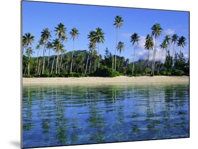 East Coast, Motu Nao Nao, Raiatea Island, Society Islands Archipelago, French Polynesia-J P De Manne-Mounted Photographic Print