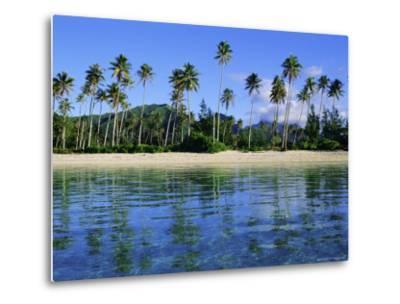 East Coast, Motu Nao Nao, Raiatea Island, Society Islands Archipelago, French Polynesia-J P De Manne-Metal Print