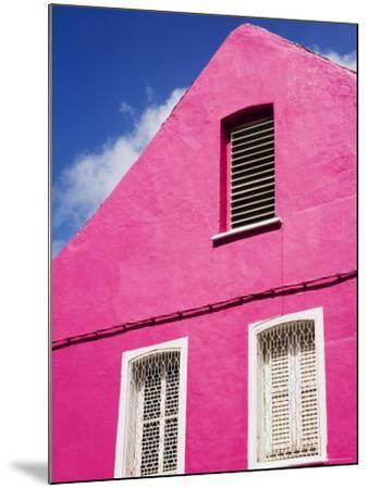 Pink Building on Republique Street, Fort-De-France, Martinique, French Antilles, West Indies-Richard Cummins-Mounted Photographic Print