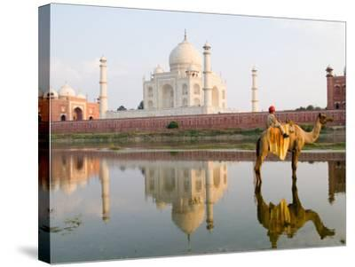 Young Boy on Camel, Taj Mahal Temple Burial Site at Sunset, Agra, India-Bill Bachmann-Stretched Canvas Print