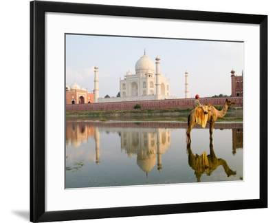 Young Boy on Camel, Taj Mahal Temple Burial Site at Sunset, Agra, India-Bill Bachmann-Framed Photographic Print