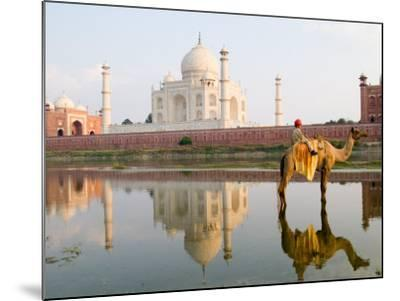Young Boy on Camel, Taj Mahal Temple Burial Site at Sunset, Agra, India-Bill Bachmann-Mounted Photographic Print