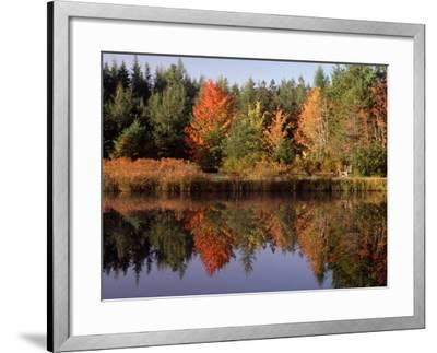 Maine Pond with Reflection and Chair, USA-Charles Sleicher-Framed Photographic Print
