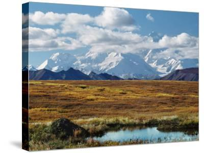 Tundra West of the Eieson Visitors Center, Pond with Beaver House, Mt. Denali, Alaska, USA-Charles Sleicher-Stretched Canvas Print
