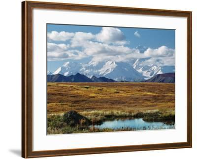 Tundra West of the Eieson Visitors Center, Pond with Beaver House, Mt. Denali, Alaska, USA-Charles Sleicher-Framed Photographic Print