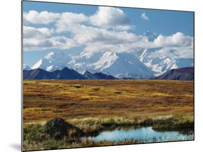 Tundra West of the Eieson Visitors Center, Pond with Beaver House, Mt. Denali, Alaska, USA-Charles Sleicher-Mounted Photographic Print