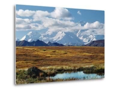 Tundra West of the Eieson Visitors Center, Pond with Beaver House, Mt. Denali, Alaska, USA-Charles Sleicher-Metal Print