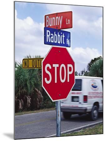 Intersection Sign on Sanibel Island, Florida, USA-Charles Sleicher-Mounted Photographic Print