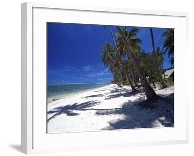 Tambua Sands Resort, Palm Trees and Shadows on Beach, Coral Coast, Melanesia-David Wall-Framed Photographic Print