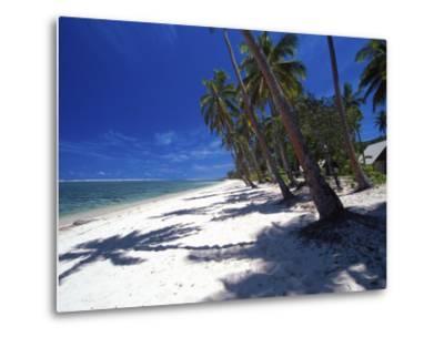 Tambua Sands Resort, Palm Trees and Shadows on Beach, Coral Coast, Melanesia-David Wall-Metal Print