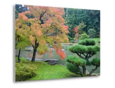 Autumn Color at the Japanese Garden, Washington Park Arboretum, Seattle, Washington, USA-Jamie & Judy Wild-Metal Print