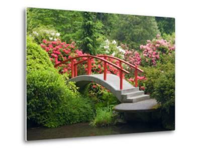 Moon Bridge and Blossoming Rhododendrons, Kubota Garden, Seattle, Washington, USA-Jamie & Judy Wild-Metal Print