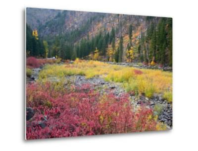 Autumn Color Along the Wenatchee River, Tumwater Canyon, Wenatchee National Forest, Washington, USA-Jamie & Judy Wild-Metal Print
