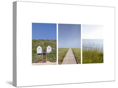 Grassy Berm at Water's Edge--Stretched Canvas Print