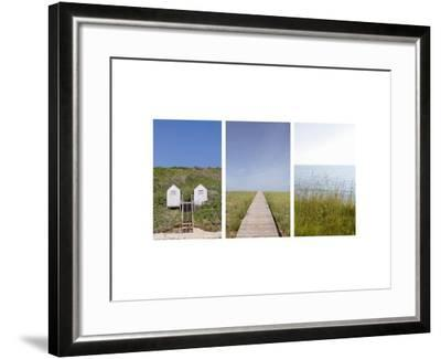 Grassy Berm at Water's Edge--Framed Photo
