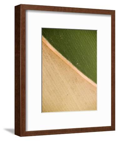 Alfalfa Crop with Pivot Irrigation, Zambia-Michael Fay-Framed Photographic Print
