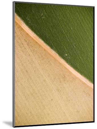 Alfalfa Crop with Pivot Irrigation, Zambia-Michael Fay-Mounted Photographic Print