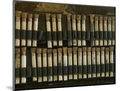 Close View of Test Tubes from an Antique Medical Bag, Stonington, Connecticut-Todd Gipstein-Mounted Photographic Print