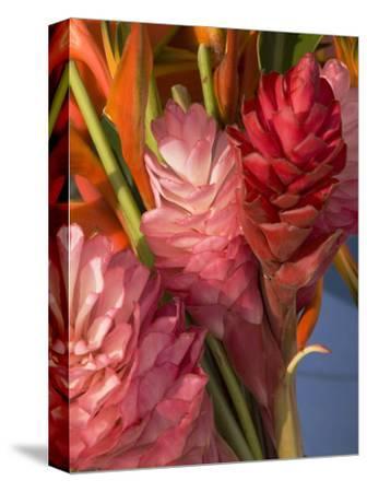 Colorful Tropical Flowers at Farmers Market Waimea Bay, Hawaii-Bill Hatcher-Stretched Canvas Print