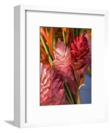 Colorful Tropical Flowers at Farmers Market Waimea Bay, Hawaii-Bill Hatcher-Framed Photographic Print