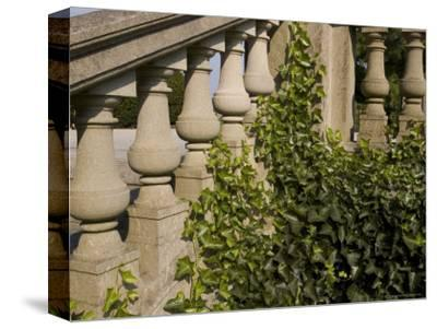 Close View of the Ivy Covered Balustrade of a Staircase-Todd Gipstein-Stretched Canvas Print