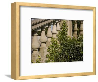 Close View of the Ivy Covered Balustrade of a Staircase-Todd Gipstein-Framed Photographic Print
