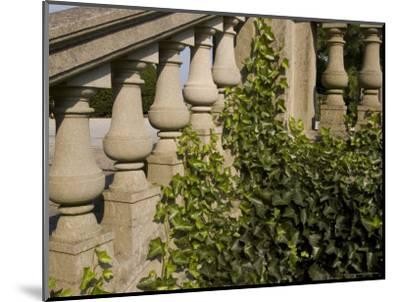 Close View of the Ivy Covered Balustrade of a Staircase-Todd Gipstein-Mounted Photographic Print