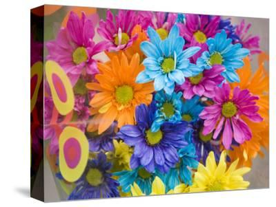 Colorful Bouquet of Flowers, Lincoln, Nebraska-Joel Sartore-Stretched Canvas Print