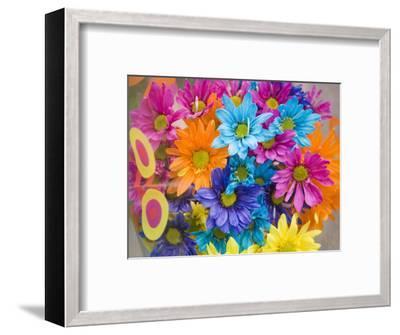 Colorful Bouquet of Flowers, Lincoln, Nebraska-Joel Sartore-Framed Photographic Print